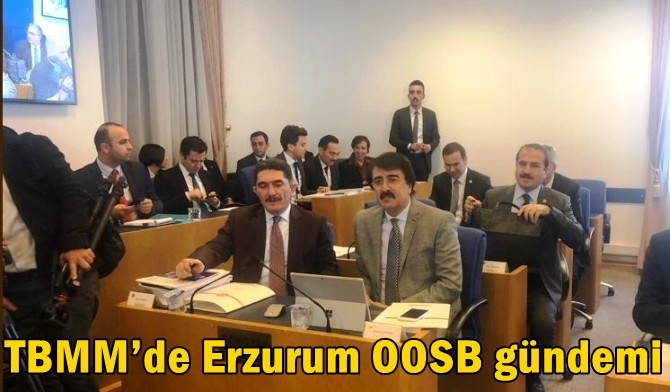 TBMM'de Erzurum OOSB gündemi
