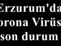Erzurum'da Korona Virüste son durum