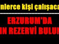 Erzurum'da altın rezervi bulundu